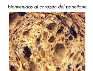 Paco Torreblanca – Campaña Panettone