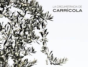 LA CIRCUMSTÀNCIA DE CARRÍCOLA - LLIBRE DE GRAN FORMAT